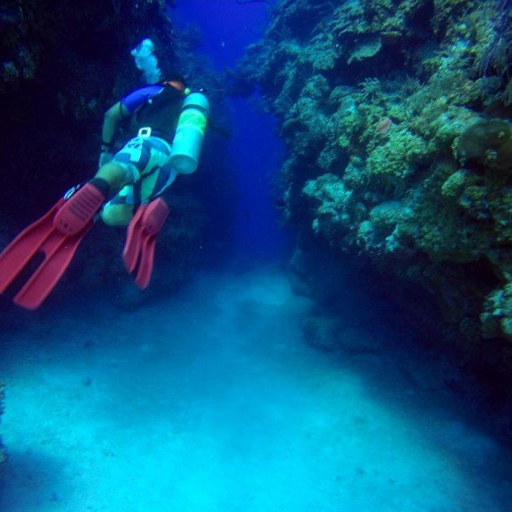 Blue Hole Half Moon Cave at Sea Star Belize